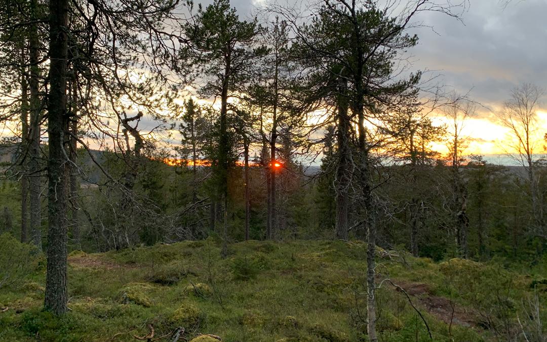 Teerivaaran kierros, Syötteen kansallispuisto, Pudasjärvi
